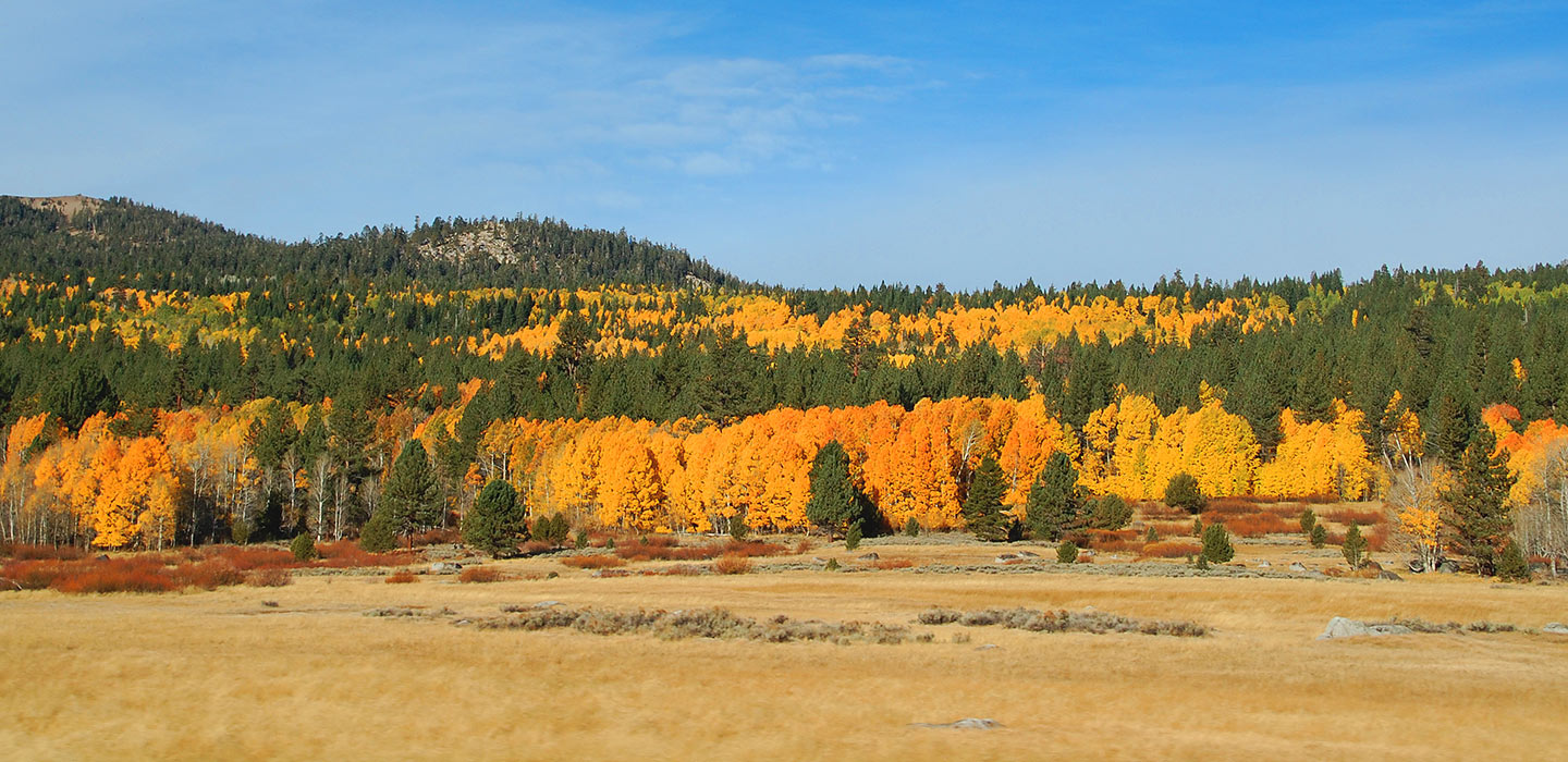 Fall Colors In Hope Valley