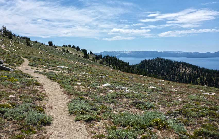 Tahoe Rim Trail above Marlette Lake with Lake Tahoe in the distance