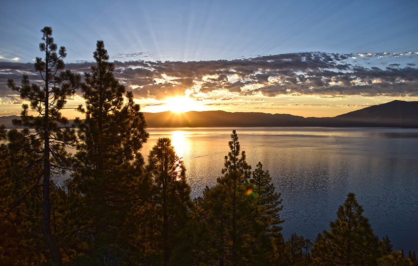 Sunrise at Lake Tahoe with Jeffrey Pine Trees